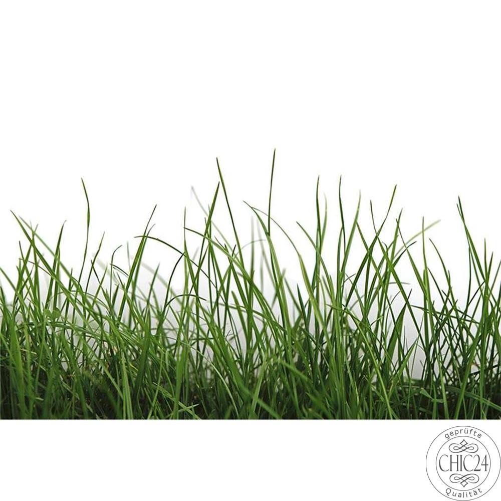 raumbilder tapeten green grass detail chic24 vintage. Black Bedroom Furniture Sets. Home Design Ideas