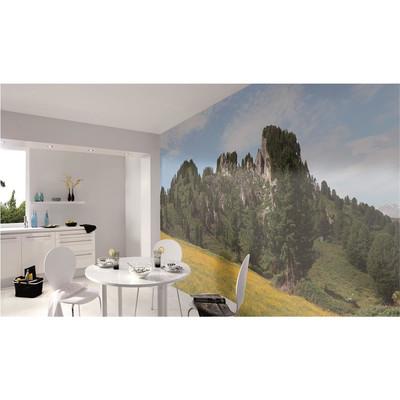 Raumbilder Tapeten Austrian Mountains View 6