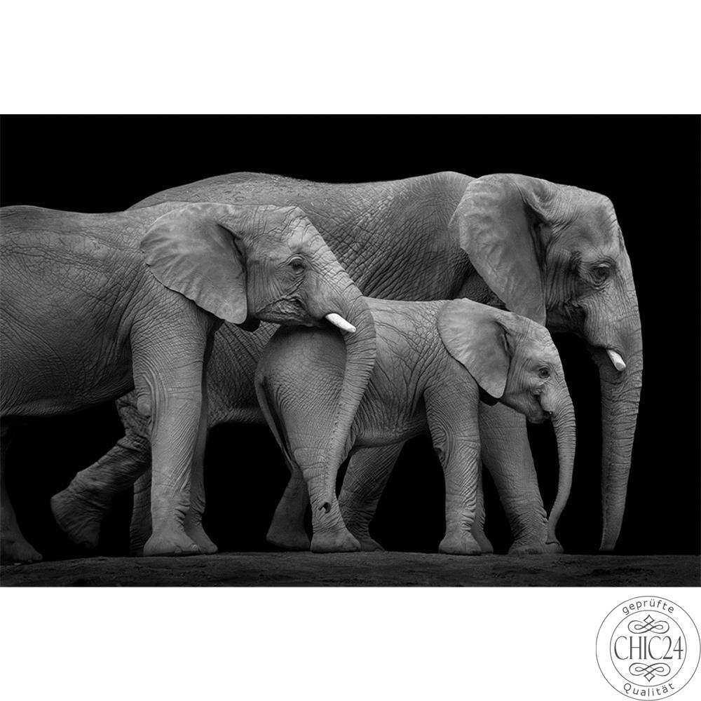 raumbilder tapeten three elephants chic24 vintage. Black Bedroom Furniture Sets. Home Design Ideas