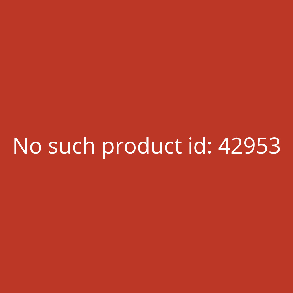 fototapete no 1510 vliestapete architektur tapete wald b ume nebel herbst natur baustil. Black Bedroom Furniture Sets. Home Design Ideas